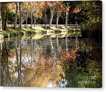 A Golden Moment  Canvas Print by France  Art