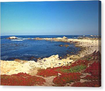 A Gorgeous Day On The Monterey Peninsula At Asilomar Canvas Print