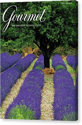 South Of France Canvas Print - A Gourmet Cover Of A Lavender Field by Julian Nieman