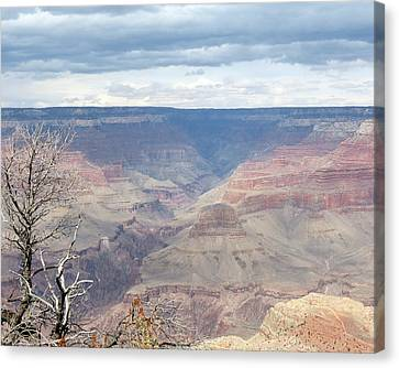 A Grand Canyon Canvas Print
