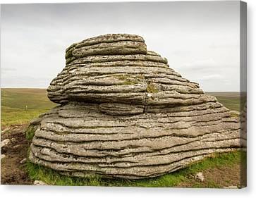 A Granite Tor Canvas Print by Ashley Cooper