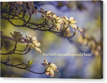 A Grateful Heart Canvas Print by Sara Frank