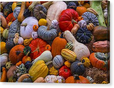 Foodstuffs Canvas Print - A Great Harvest by Garry Gay