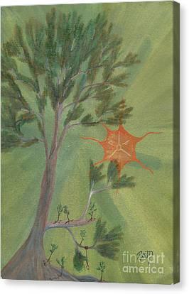 A Great Tree Grows Canvas Print by Robert Meszaros