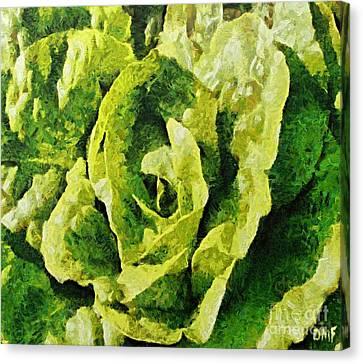 A Green Source Of Vitamins Canvas Print by Dragica  Micki Fortuna