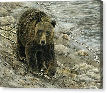 A Grey And Grizzly Day Canvas Print