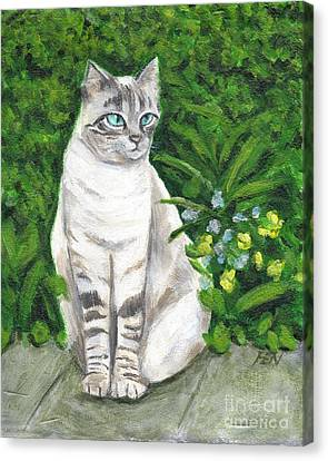 A Grey Cat At A Garden Canvas Print
