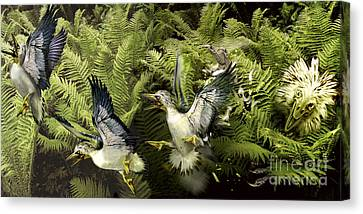 A Group Of Ichthyornis Seabirds Canvas Print by Jan Sovak