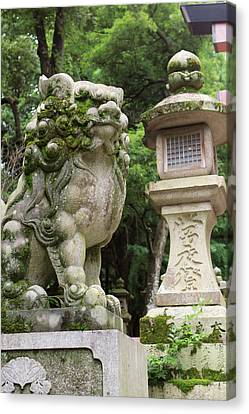A Guardian Stone Lion Traditional Stone Canvas Print by Paul Dymond