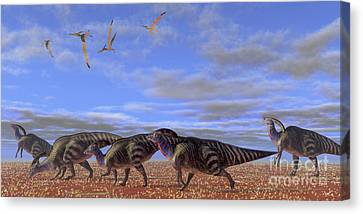 A Herd Of Parasaurolophus Dinosaurs Canvas Print by Corey Ford