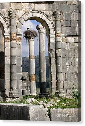 A Home In Ruins Canvas Print by Sophie Vigneault