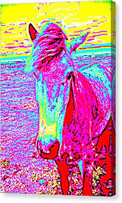 A Horse Comes To Me In A Dream Tells Me To Stay With Her  Canvas Print by Hilde Widerberg