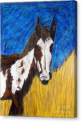 A Horse Of Course Canvas Print by Becca Lynn Weeks