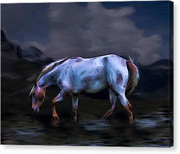 A Horse Of Many Colors Canvas Print by Tyler Robbins