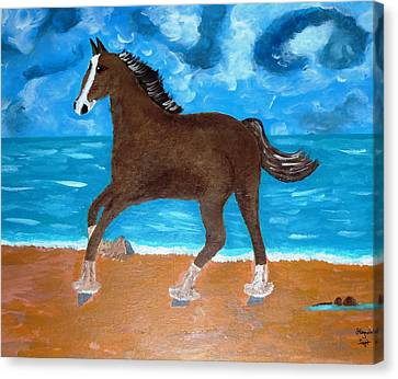 A Horse On The Beach Canvas Print by Magdalena Frohnsdorff