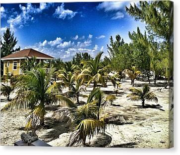 A Hot Day On Cocoa Plum Cay Canvas Print