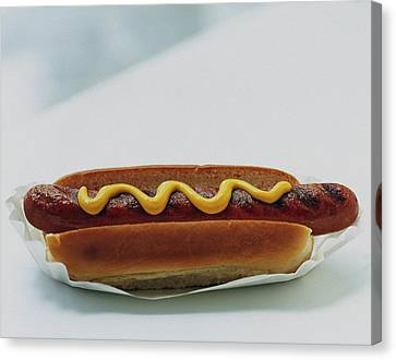 A Hot Dog With Mustard Canvas Print by Romulo Yanes