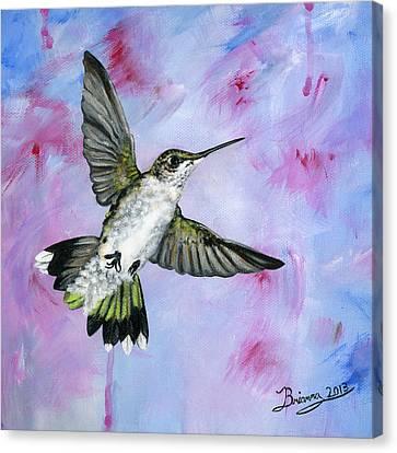 A Hummingbird's Pink Dream Canvas Print by Brianna Mulvale