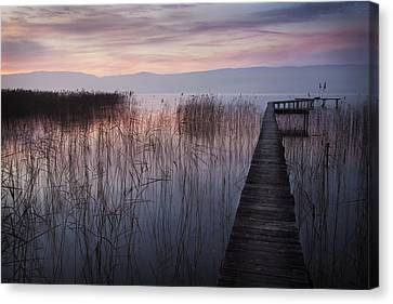 A Lake A Pier And Some Reeds Canvas Print by Dominique Dubied