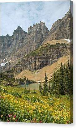A Lake Near Iceberg Lake Along The Trail Canvas Print by Natural Focal Point Photography