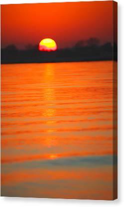 A Last Sunset Canvas Print by Karol Livote