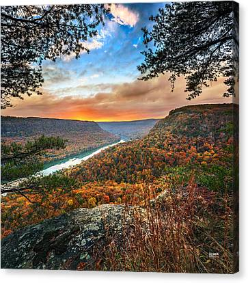 A Late Autumn View Canvas Print by Steven Llorca