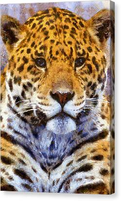 A Leopard Never Changes His Spots Canvas Print by Georgiana Romanovna
