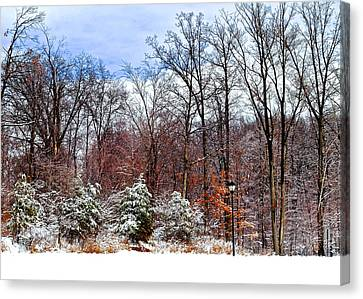 A Light Dusting Canvas Print by Frozen in Time Fine Art Photography