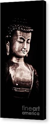 A Light In The Dark Canvas Print by Tim Gainey