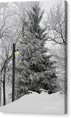 Lamp Post Canvas Print - A Light Snow by Lois Bryan