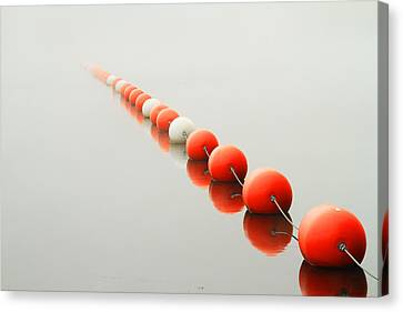 A Line To The Unknown Canvas Print by Karol Livote