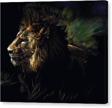 A Lion #1 Canvas Print