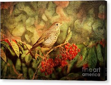 A Little Bird With Plumage Brown Canvas Print