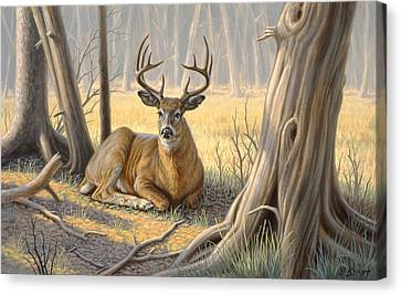 'a Little Shade' Canvas Print by Paul Krapf