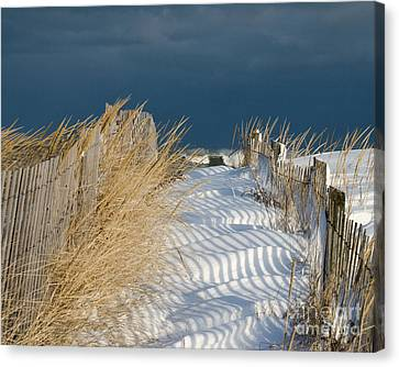 A Long Way From Summer Canvas Print by Stephen Flint