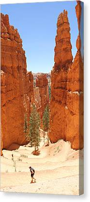 A Long Way To The Top Canvas Print by Mike McGlothlen