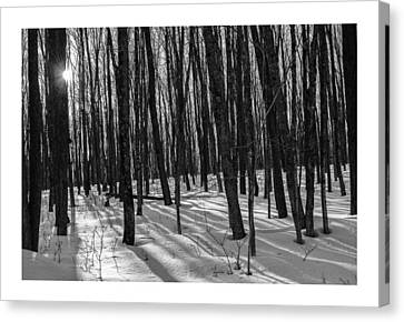 A Long Winter's Day Canvas Print by Dan Hefle