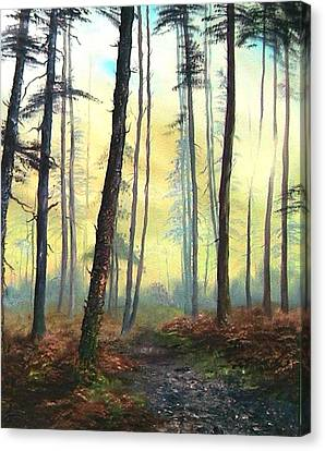 Cannock Chase Canvas Print - A Lovely Walk On Cannock Chase by Jean Walker