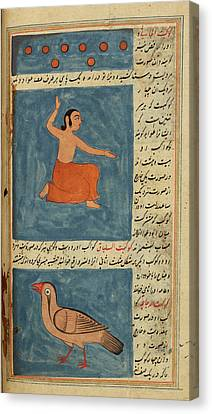 A Man And A Bird Canvas Print by British Library