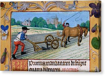 A Man With A Horsedrawn Plough Canvas Print