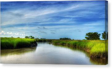 A Marsh At Jekyll Island Canvas Print by Greg and Chrystal Mimbs
