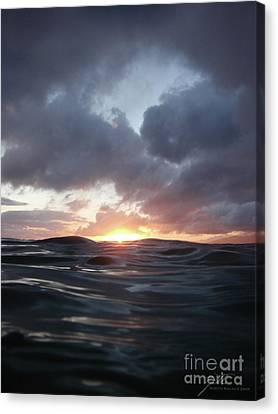 Canvas Print featuring the photograph A Mermaid's Point Of View by Suzette Kallen