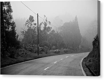 A Misty Country Road Canvas Print