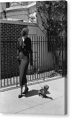 A Model Wearing A Dress Walking A Dog Canvas Print