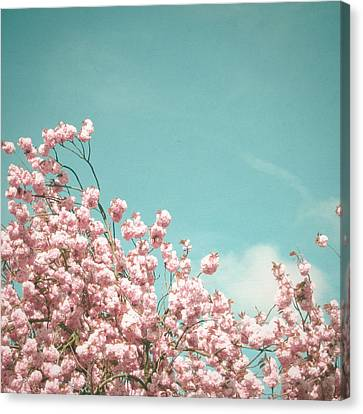 A Moment In Time Canvas Print by Cassia Beck