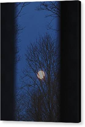 A Moon In A Blue Morning Canvas Print
