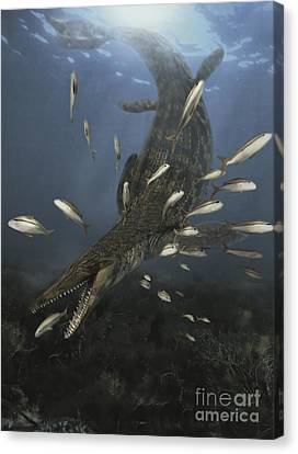 Feeding Canvas Print - A Mosasaurus Feeds On A Small School by Jan Sovak