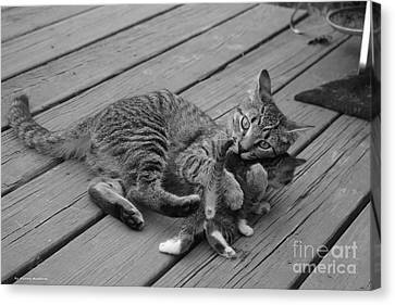 Canvas Print - A Mother's Love by Tannis  Baldwin