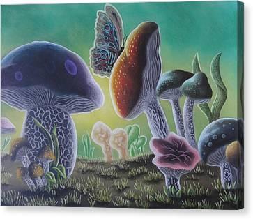 A Mushroom Kingdom Canvas Print