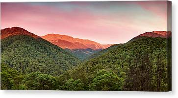 A Natural Highlight Canvas Print by Mark Lucey